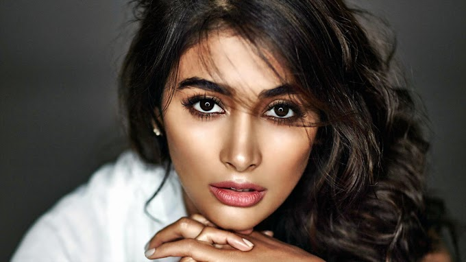 Pooja Hegde Bollywood Actress HD Wallpaper