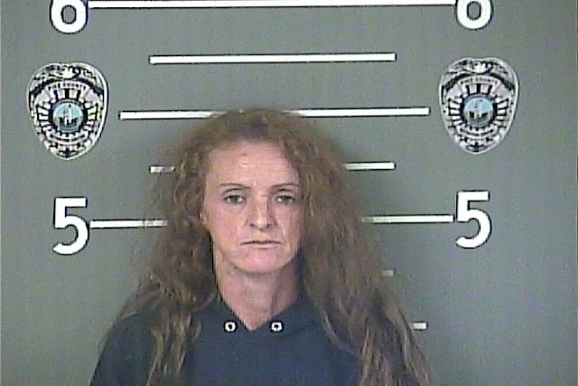 pike county mugshots pikeville ky