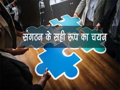 संगठन के सही रूप का चयन  Choosing the right form of organization in Hindi