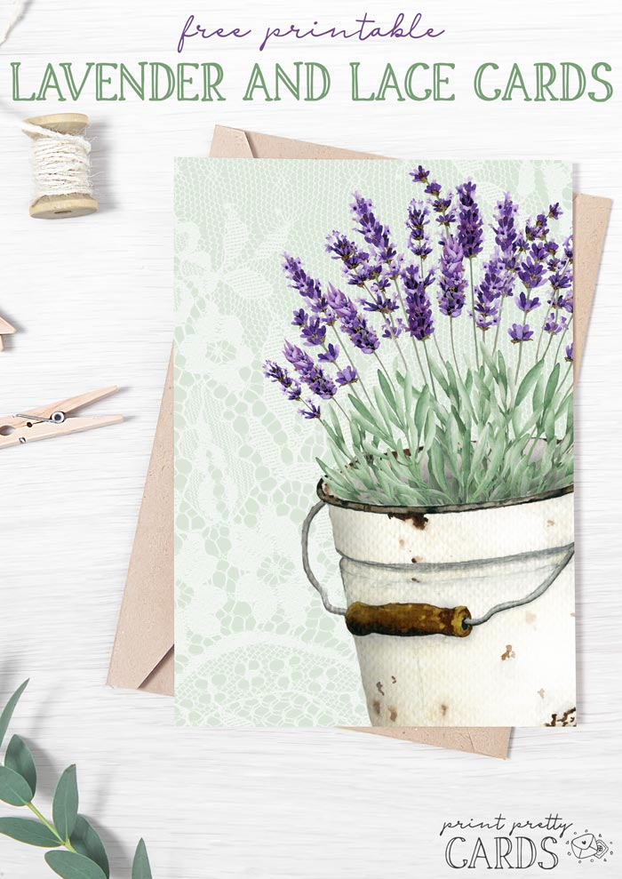Lavender and Lace Cards