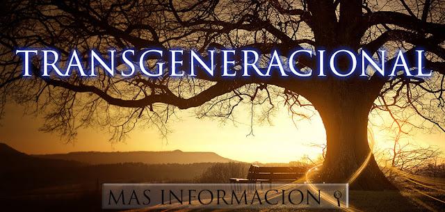 http://www.almasaranterapiasycursos.com/2018/02/TRANSGENERACIONAL.html