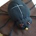 Tvoříme s dětmi: Jak vyrobit pavouka na čarodějnický nebo halloweenský kostým?