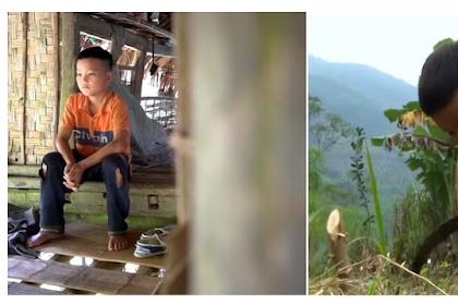 Ditinggal Orangtuanya, Boc4h 10 Tahun ini Tinggal Sendiri dan Bert4han Hidup Dengan Menanam Sayur