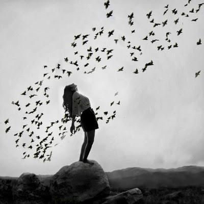 Resultado de imagen de pajaros volando blanco y negro