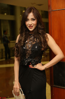 Angela Krislinzki in Transparent Black Gown at Rogue Movie Teaser Launch 1st March 2017 098.JPG