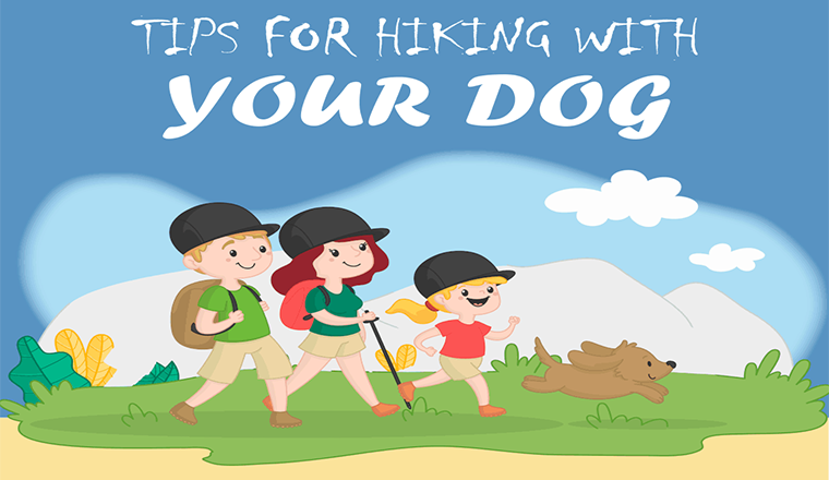 Tips for Hiking with Your Dog #infographic