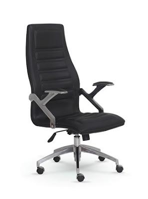 ankara,ofis koltuğu,makam koltuğu,yönetici koltuğu,başlıklı koltuk,ofis sandalyesi