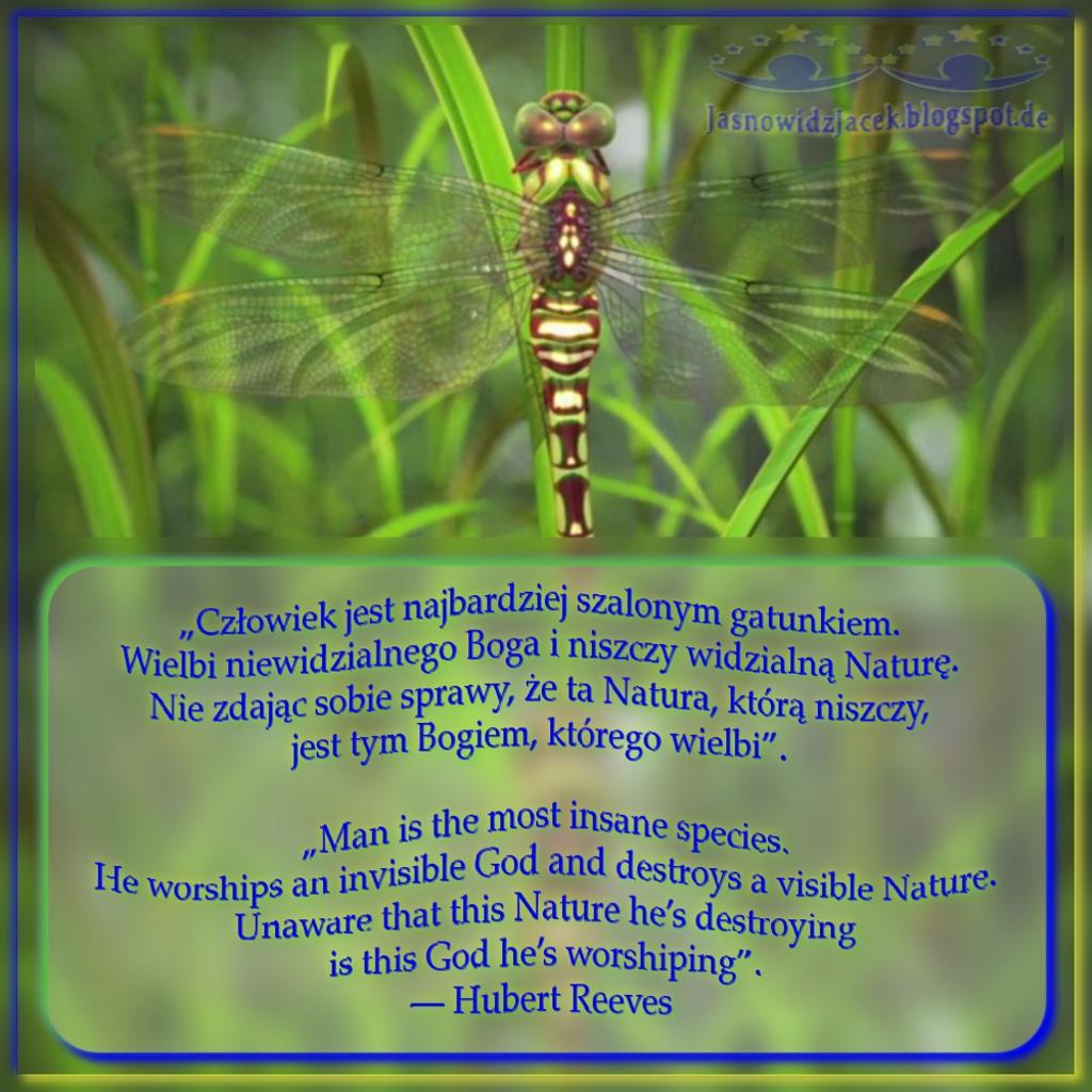 Człowiek Jest Najbardziej Szalonym Gatunkiem Wielbi Niewidzialnego Boga i Niszczy Widzialną Naturę Nie Zdając Sobie Sprawy że Ta Natura Którą Niszczy Jest Tym Bogiem Którego Wielbi - Hubert Reeves