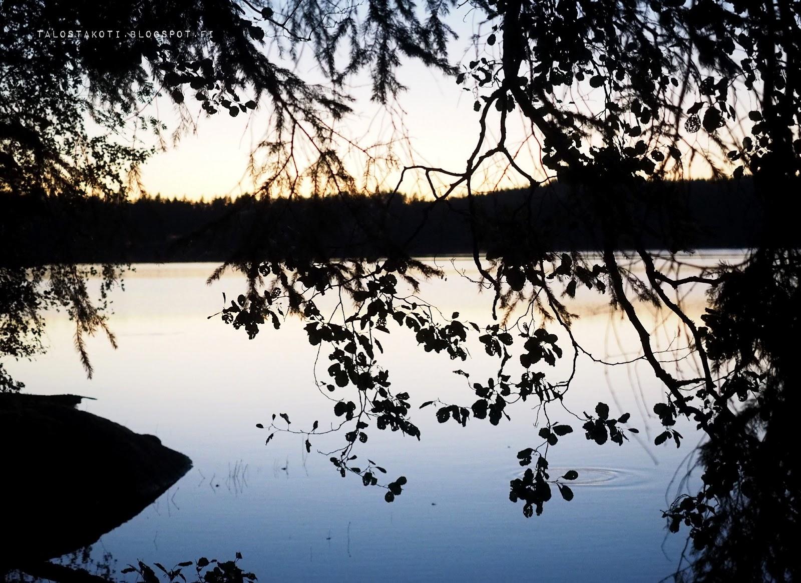 Järvimaisema, iltahämärä