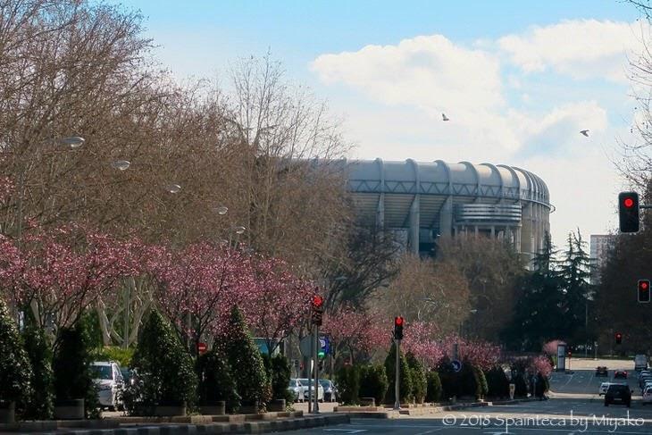 春の花とスペインのサッカー場サンティアゴ・ベルナベウ