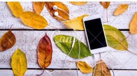 Top 10 Smartphones You should Buy in India