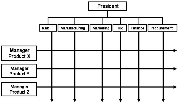 Novelty Organizational Structure