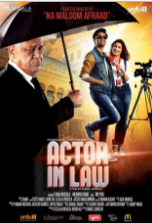 Actor in Law (2016) Pakistani Movie DVDScr 700MB