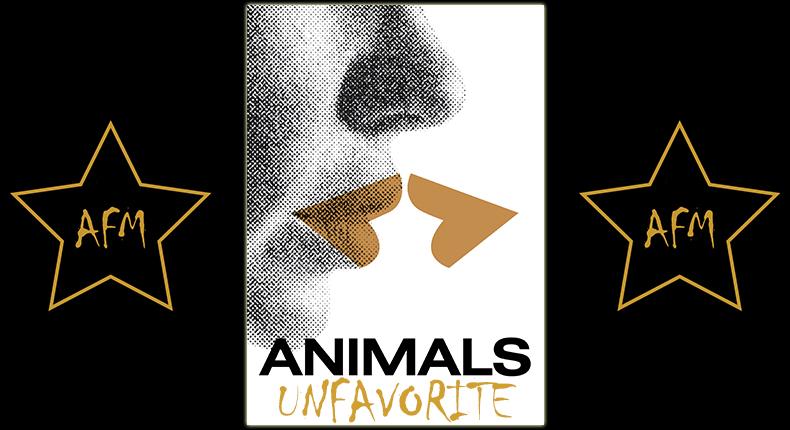 animals-stadt-land-tier-tiere-zwierzeta