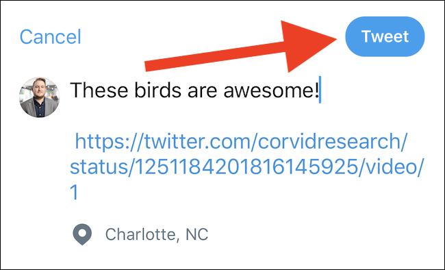"""اكتب تغريدة ثم اضغط على زر """"تغريدة"""""""