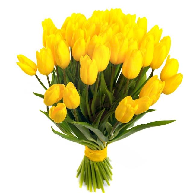 Çiçeklerin Anlamları