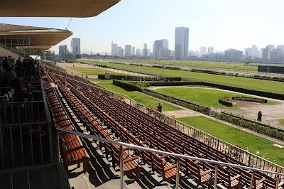 Passeio fotográfico ao Jockey Clube em São Paulo