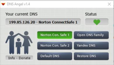 واجهة  برنامج DNS Angel
