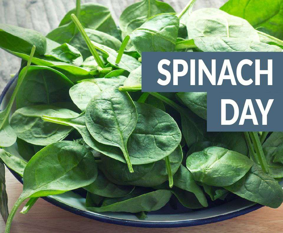 National Spinach Day Wishes Lovely Pics