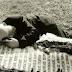 Φωτογραφία που συγκλονίζει: Ο γέροντας πατέρας του ΕΛΔΥΚάριου καταδρομέα, στον τάφο του σκοτωμένου γιου του