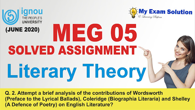meg 05, meg literary theory assignment