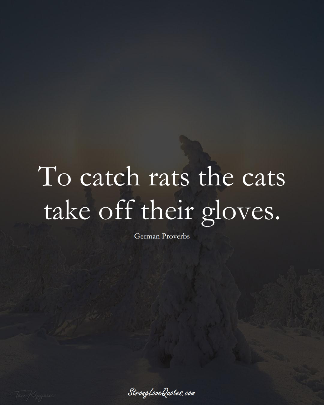 To catch rats the cats take off their gloves. (German Sayings);  #EuropeanSayings