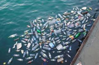 5 Dampak Pencemaran Perairan