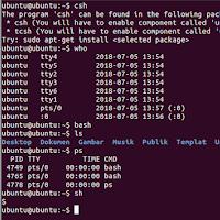 Menjalankan Bash Shell Pada Sistem Operasi Linux