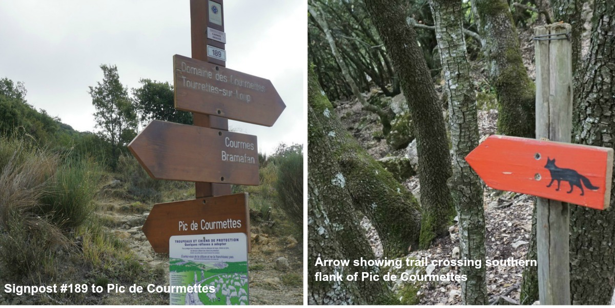 Signposts on Courmettes trail