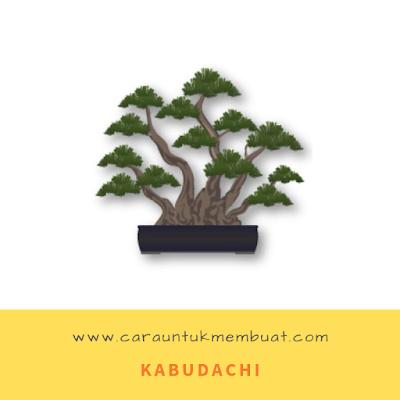 Kabudachi