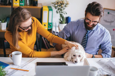 man woman and dog at desk