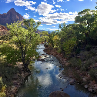 Virgin River snaking through Zion