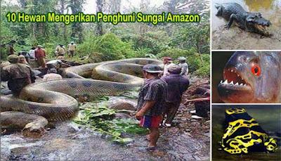 10 Hewan Mengerikan Penghuni Sungai Amazon Mahessa83 Blog Terbaik Untuk Disimak