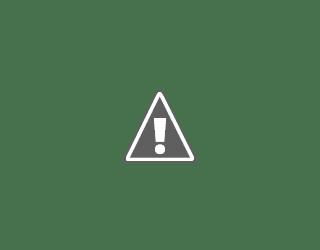 TATU Project,Green Project Coordinator