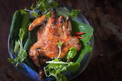 How Much Protein in Chicken?