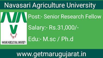 NAU Senior Research Fellow Recruitment, NAU Recruitment