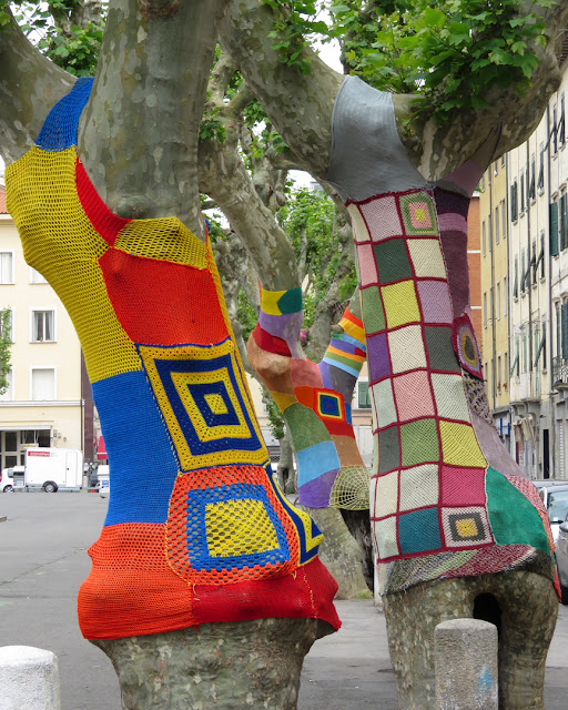 Graffiti knitting on trees in Piazza XX Settembre, Livorno