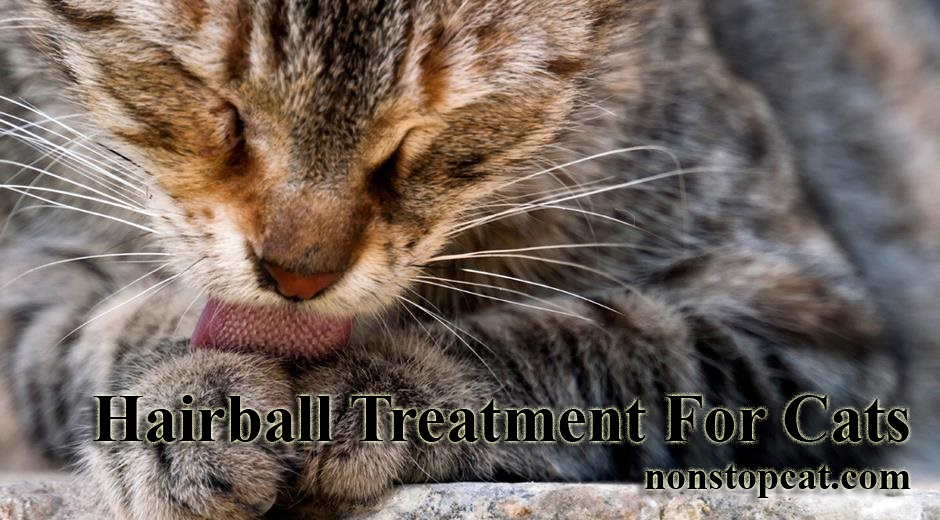 Hairball Treatment For Cats