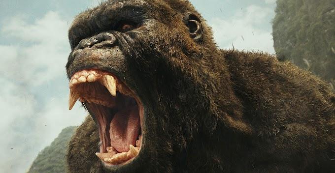 ハリウッド版「ゴジラ」の頂上決戦「ゴジラ vs. コング」は、シリーズ最短のアッという間に終わってしまう映画かもしれないレビューが伝えられた‼️