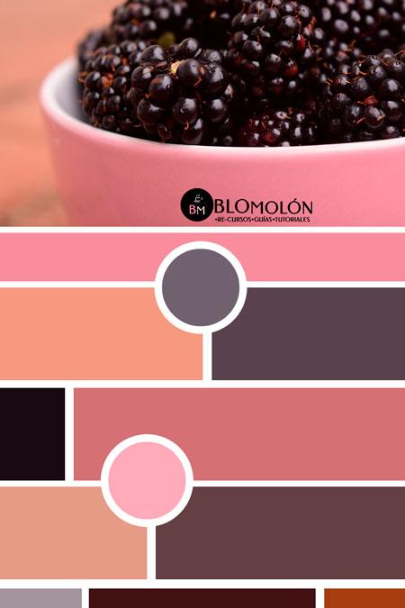 moodboard_colores_3
