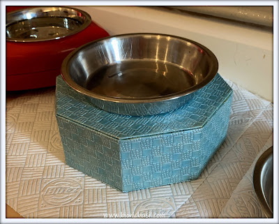 Top Tips For Cat Pawrents ©BionicBasil® Homemade Elevated Cat Bowl