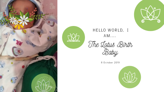 Apa itu Lotus Birth Baby