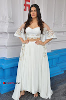 Telugu Actress Amyra Dastur Stills in White Skirt and Blouse at Anandi Indira Production LLP Production no 1 Opening  0011.JPG