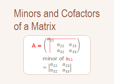 Minors and Cofactors of a Matrix