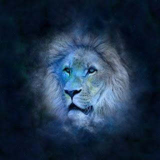 horoscope-astrology-zodiac-lion