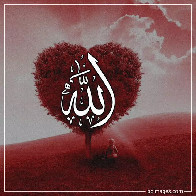 beautiful allah pictures download