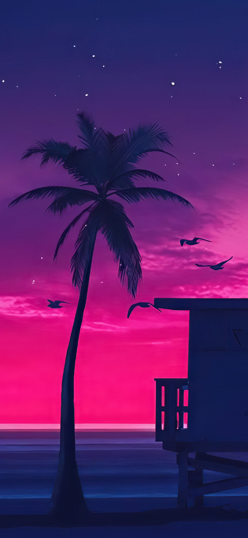 Palm Tree in the twilight wallpaper