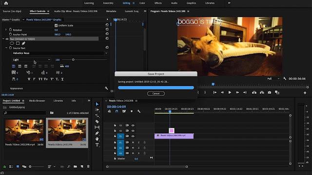 Download Adobe Premiere Pro 2020 Full Version Terbaru 2021 Free Download