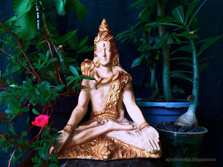 Lord Shiva Mini Statue On The Stone With Tiny Decorative Flower Plants In The Room