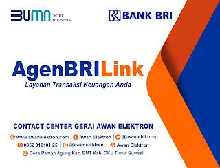 agenBRILink